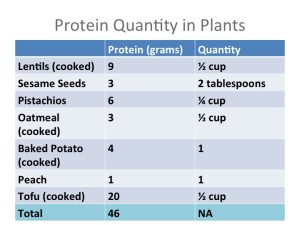 Protein Quantity in Plants