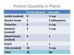 Protein Quantity in Plants
