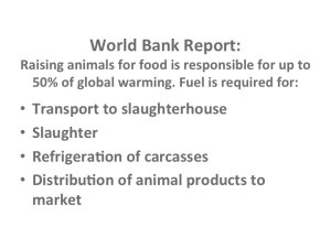 World Bank Report Animal Agriculture contribution to Global Warming