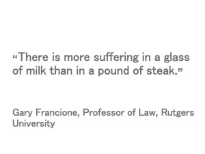 There is more suffering in a glass of milk than a pound of steak.