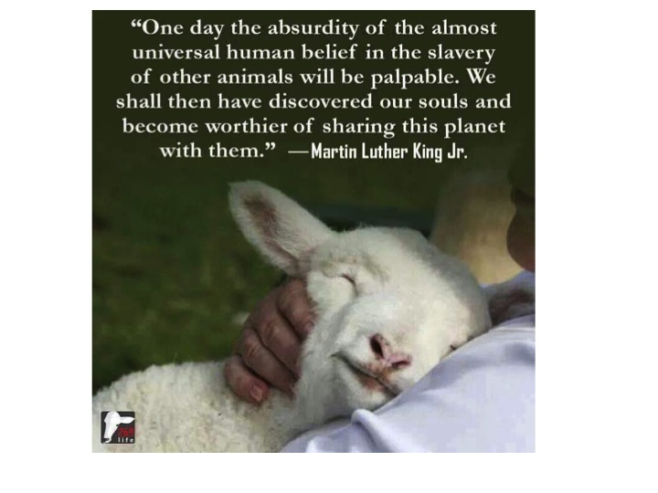 Martin Luther King animal slavery quote